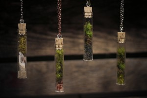 Elegant tall moss terrariums with adorable details. From Eight Oaks.